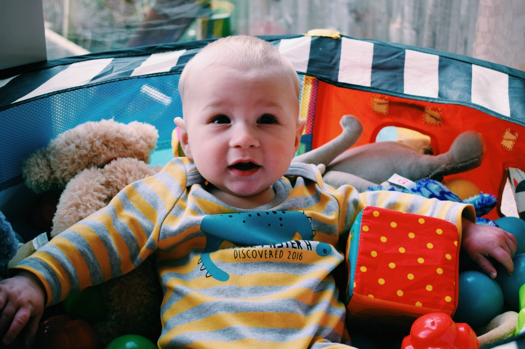A photograph of our eight month old baby boy wearing a grey and yellow striped personalised dinosaur babygrow from Sgt. Smith, sitting up in a brightly coloured ball pit surrounded by brightly coloured toys - Little Mister H at eight months old - an update - Mrs H's favourite things