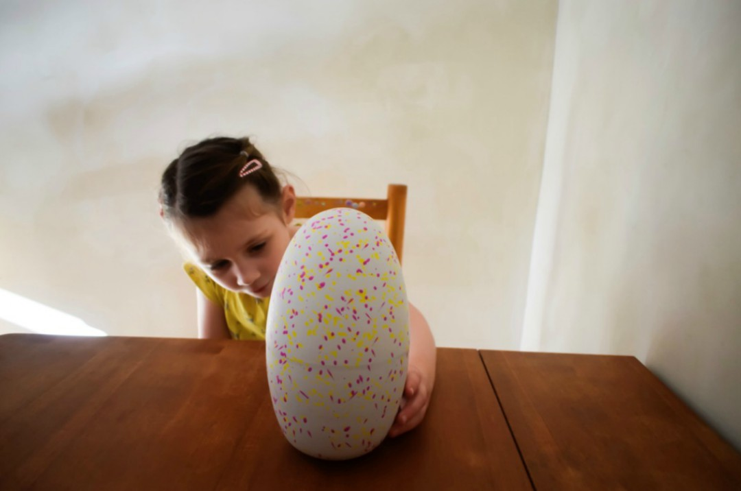 A photograph of a little girl looking intently at a Hatchimals Surprise egg - she has a smile on her face and a look of excitement - Reviewing the Brand New Hatchimal: Hatchimals Surprise - Mrs H's favourite things