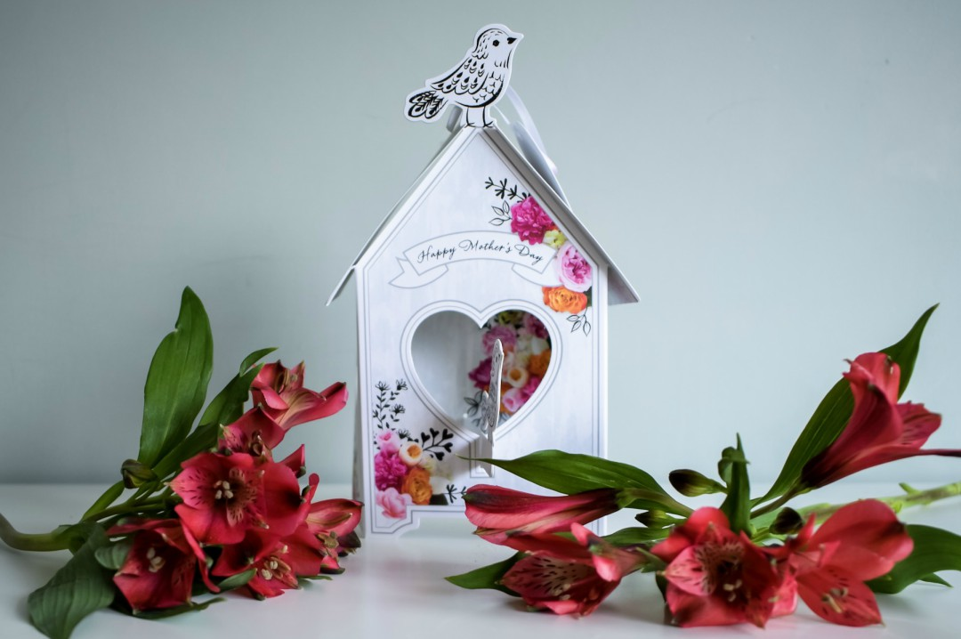 A photograph of a 3D birdhouse Mother's Day card from Hallmark and two bunches of flowers - Mother's Day Gift List - Treats for the Mother in your Life - Mrs H's favourite things