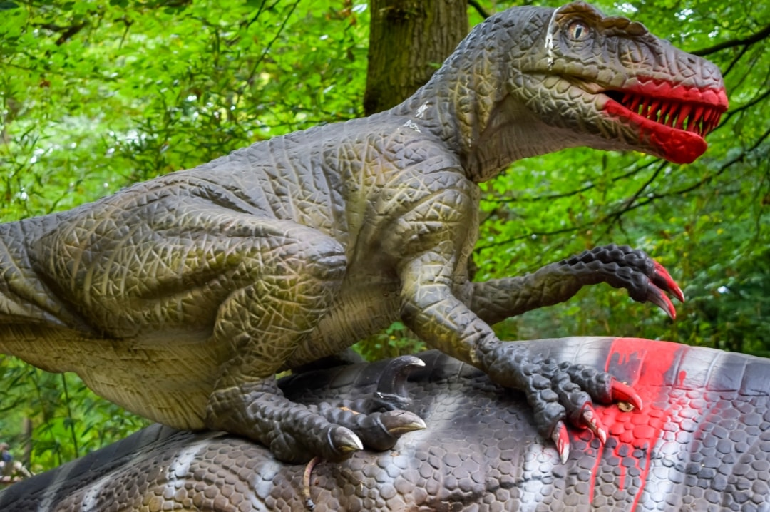 A photograph of an animatronic velociraptor from the World of Dinosaurs at Paradise Wildlife Park - Paradise Wildlife Park - A Review - Mrs H's favourite things