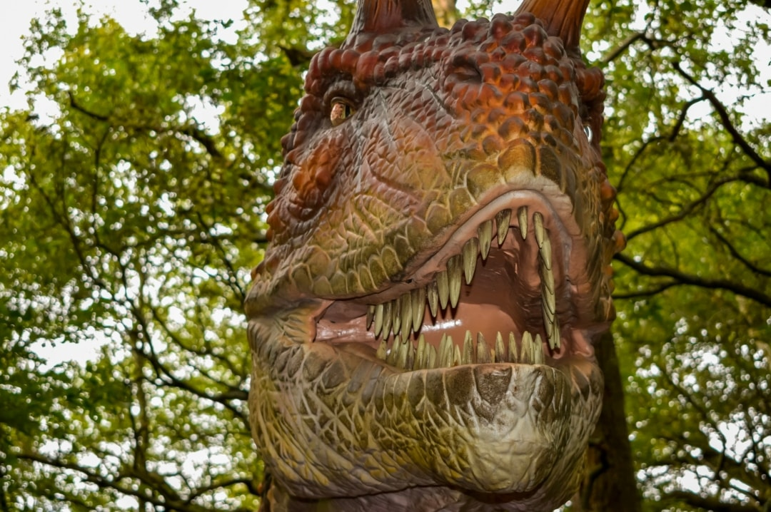 A photograph of the roaring face of an animatronic dinosaur from the World of Dinosaurs at Paradise Wildlife Park - Paradise Wildlife Park - A Review - Mrs H's favourite things