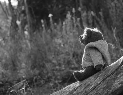 A black and white photograph of a teddy bear sitting on a bench - Tell Me Why - Why I'm Supporting Tommy's Tell Me Why Campaign - Mrs H's favourite things