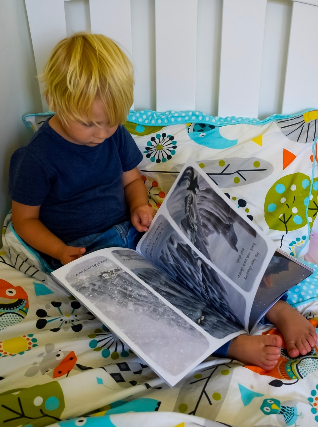 """A photograph of a little boy holding a copy of """"The Way Home For Wolf"""" by Rachel Bright and Jim Field - The Way Home For Wilf by Rachel Bright and Jim Field - A Review - Mrs H's favourite things"""