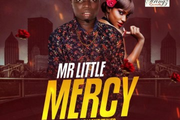 Mr Little - Mercy cover