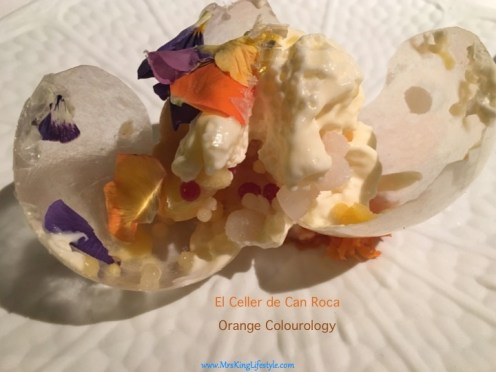 23 Roca Orange Coloourlogy_new