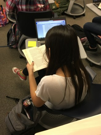 Using a passage from a novel as a mentor text