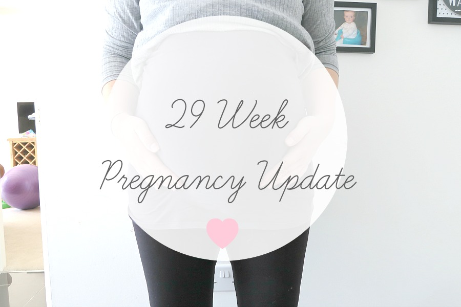 29 Week Pregnancy Update