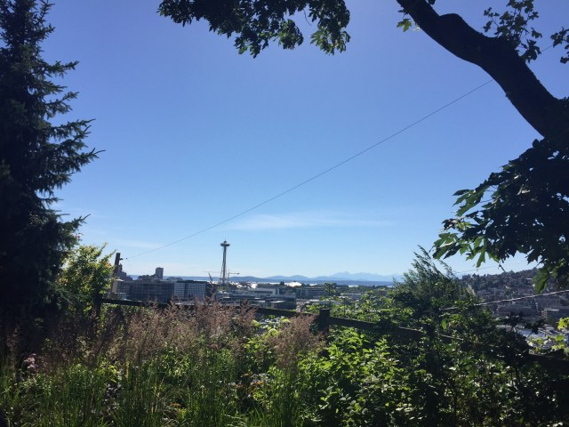 The view of the Space Needle and downtown from the Lookout Bar in Seattle.
