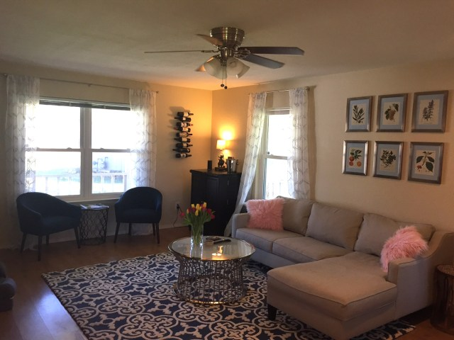 New living room featuring furniture from West Elm, Overstock, and Wayfair