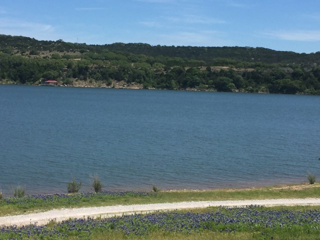 The view of Lake Travis at Muleshoe Bend Campground, including a patch of bluebonnets