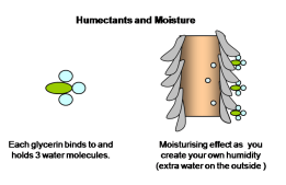 humectants-and-moisture