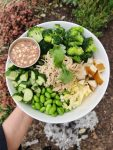 Asian Broccoli Noodle Salad