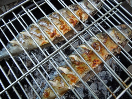 Image of mackerel on a barbecue