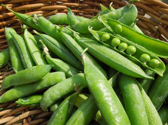 Image of peas in the pod