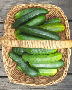 Image of basket of cucumbers
