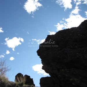 Blue Skies While Hiking In Oregon 128 Print Download