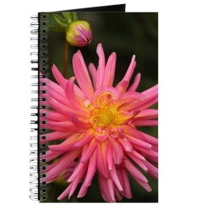 dahlia flower in the flower bed Journal