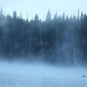 elk lake cascade mountains oregon 056