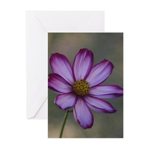 Bloom of the Cosmos Greeting Cards