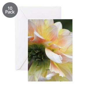 Dahlia in the garden Greeting Cards pk of 10