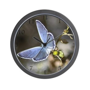 Karner Blue Butterfly Wall Clock