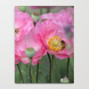 Pink Poppy Flowers With Honeybees Notebook