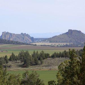 central oregon landscape 009