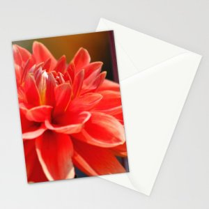 Portrait Of A Dahlia Bloom 3 Stationery Cards