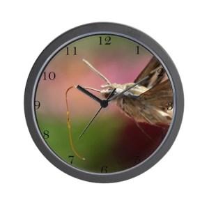 Sphinx Hawk Hummingbird Moth Wall Clock