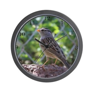 White Crowned Sparrow Large Wall Clock