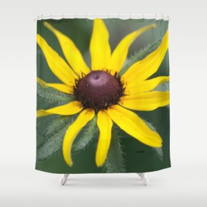 Black Eyed Susan Flower Shower Curtain