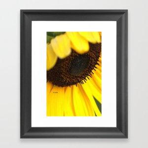 Cheerful Sunflower Bloom Framed Art Print
