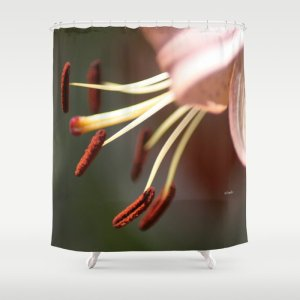 Micro of a Lily Flower in Bloom Shower Curtain