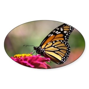 Monarch Butterfly Decal Oval