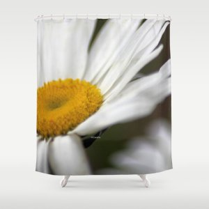 Shasta Daisy Flower Shower Curtain