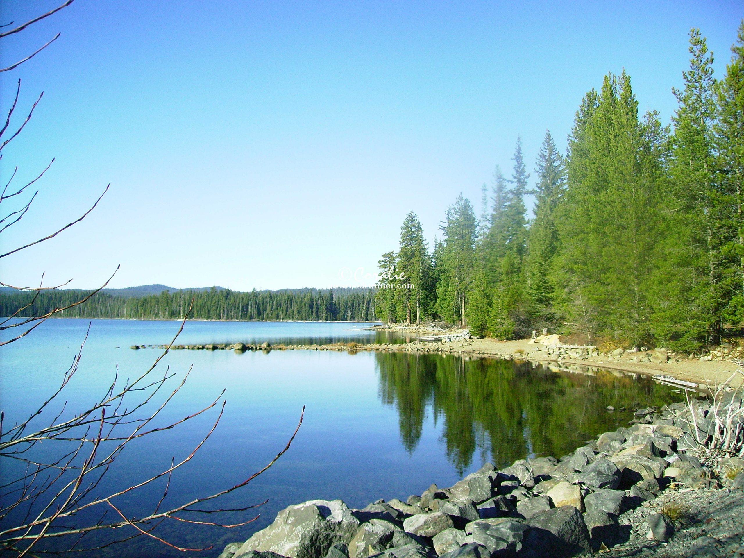 Cultus Lake Oregon 0253