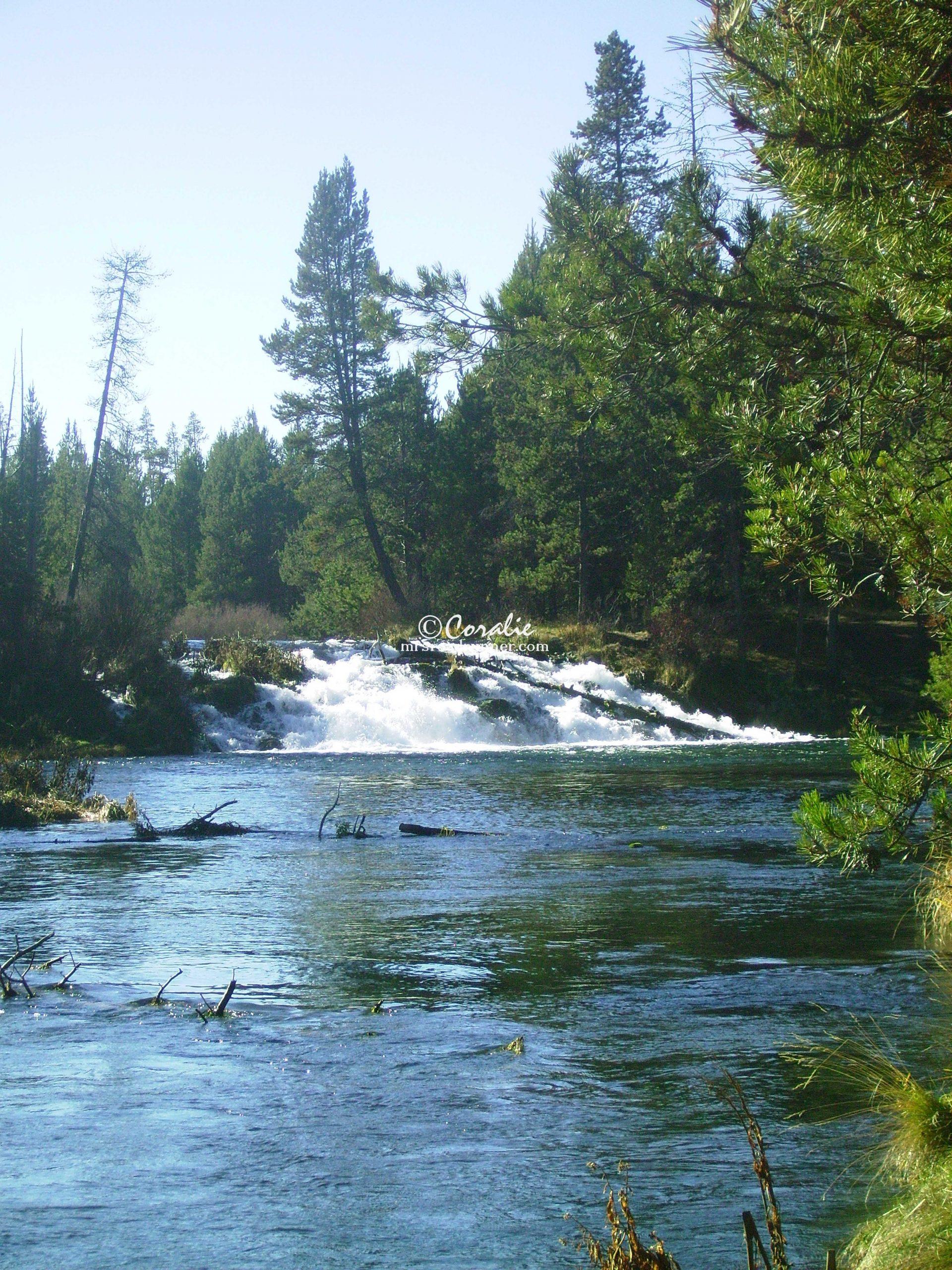 Fall River Oregon 0225