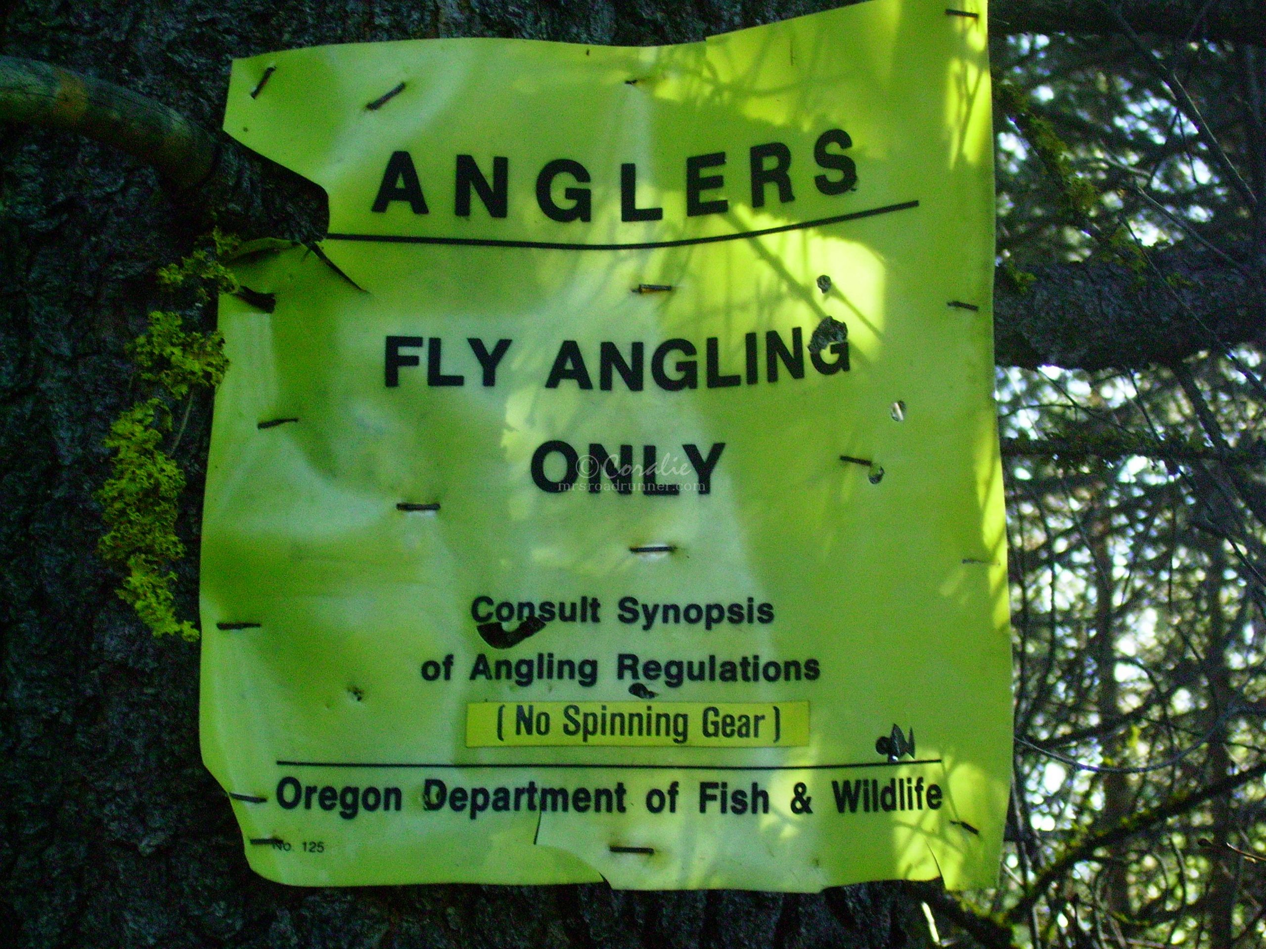 fly angling only fly fishing sign 0237