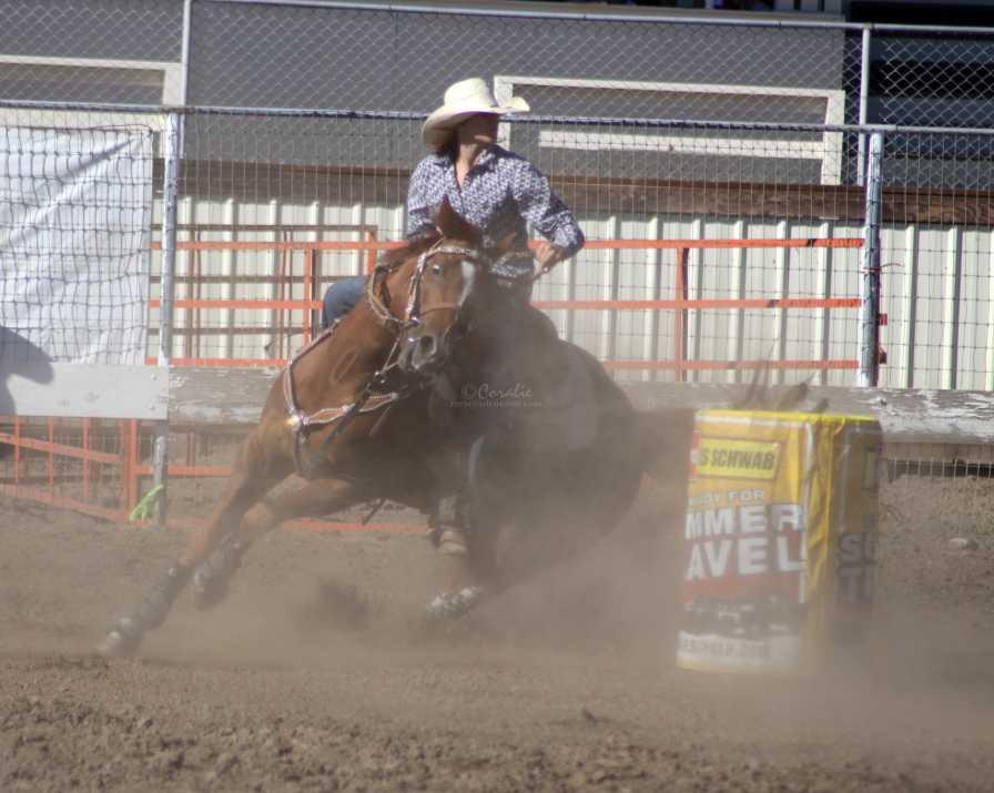 barrel racing 2449