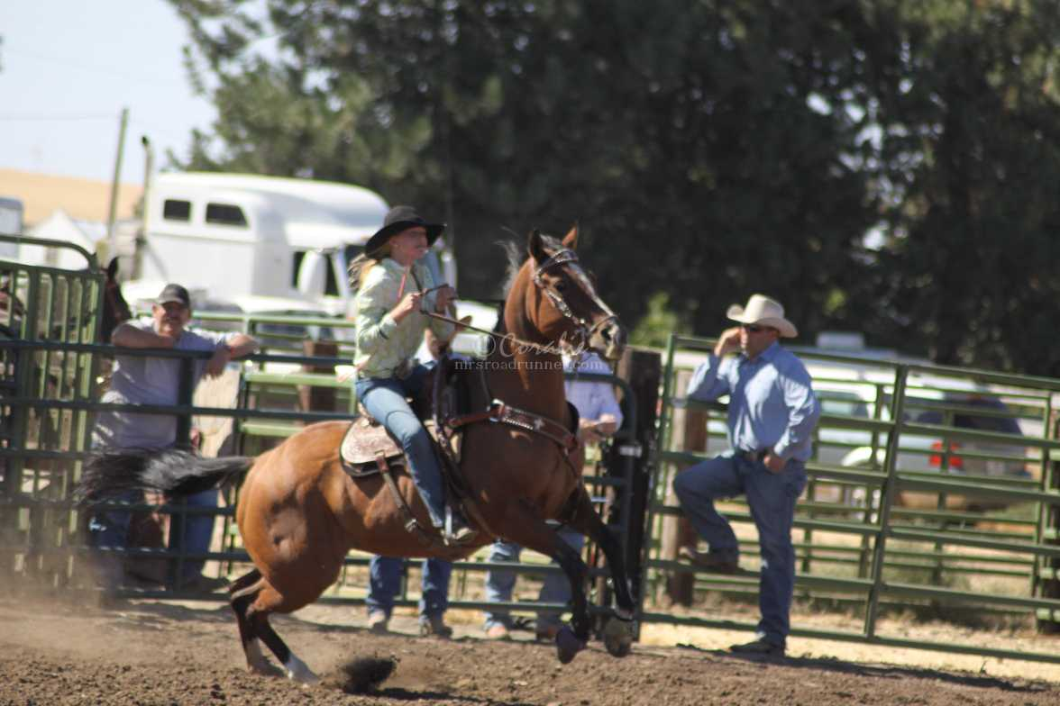 get up and go rodeo 322
