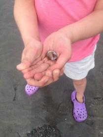 Finding treasure at the beach