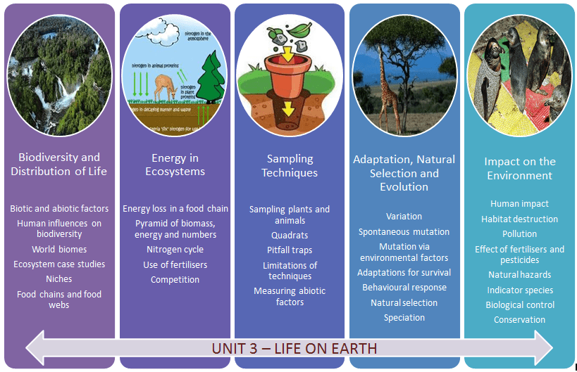 Unit 3 – Life OnEarth Mrs Smith' S Biology