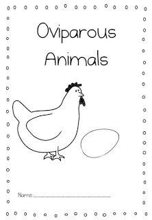 Kindergarten Animal Activities and Ideas