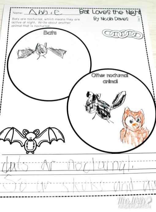 Kindergarten Lesson Plans Week 12 Bat Loves the Night