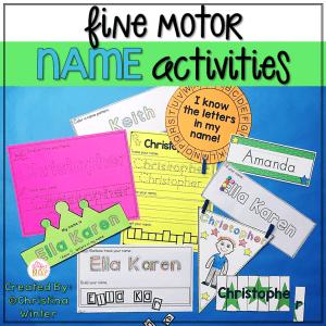 name activities fine motor skills