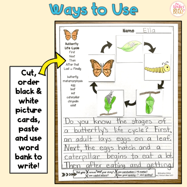 Sequence Writing Plant and Animal Life Cycles