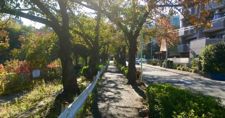 甜點店附近的風光<br>名古屋市 昭和區 隼人町