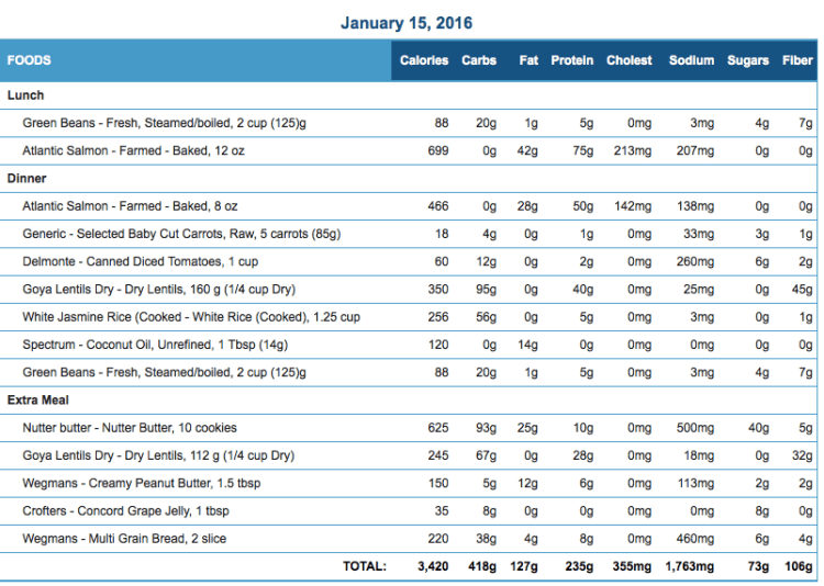 Mike's Diet Journal Entry for January 15 2016