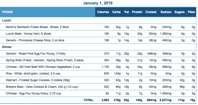 Mike's Diet Journal Entry for January 1 2016