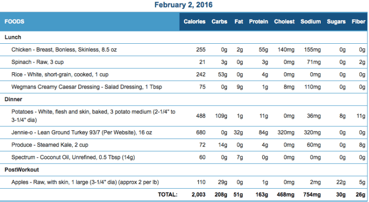 Mike's Diet Journal Entry for Feb 2 2016